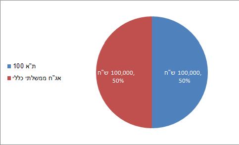 תיק השקעות 2008 50-50