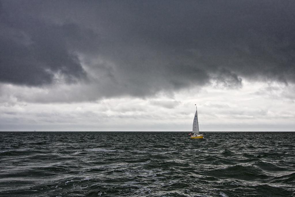 צילום:  Michiel Jelijs. ברישיון CC.
